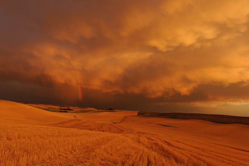 Palouse Area 2013-6083