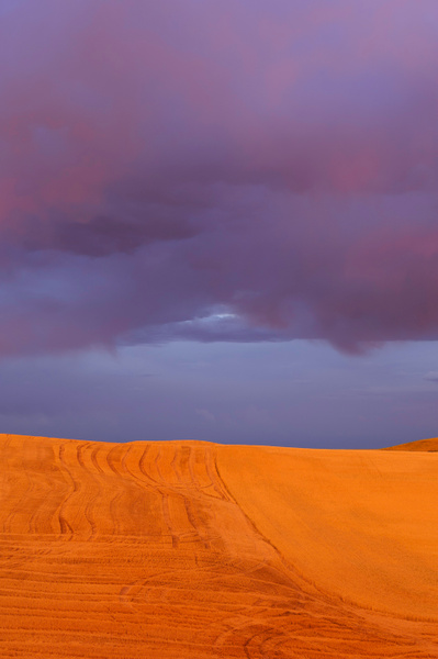 Palouse Area 2013-6093 by Robert Duncan