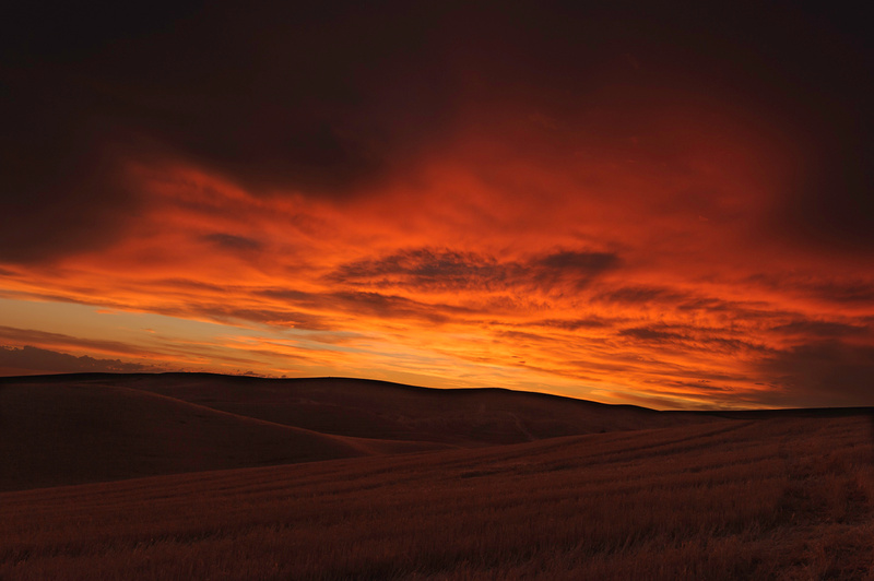 Palouse Area 2013-6106