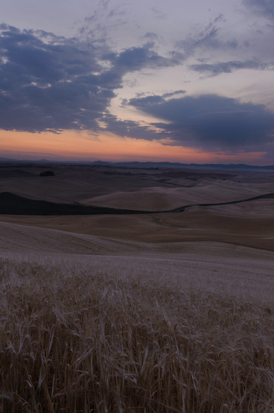 Palouse Area 2013-6121 by Robert Duncan