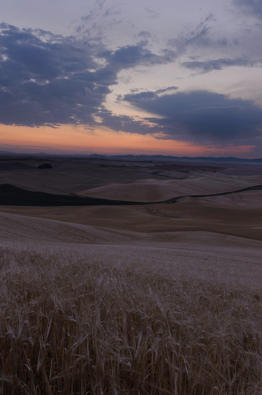 Palouse Area 2013-6121