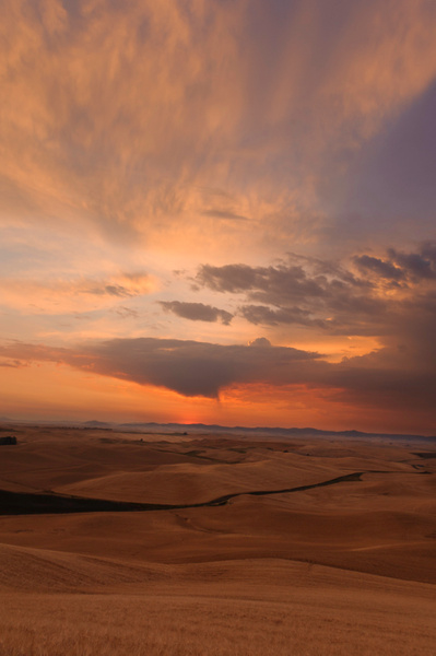 Palouse Area 2013-6138 by Robert Duncan