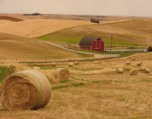 Palouse Area 2013--6036 by Robert Duncan