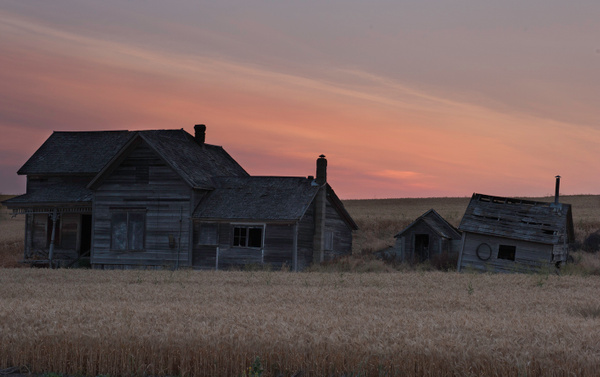 Palouse Area 2013-5876 by Robert Duncan