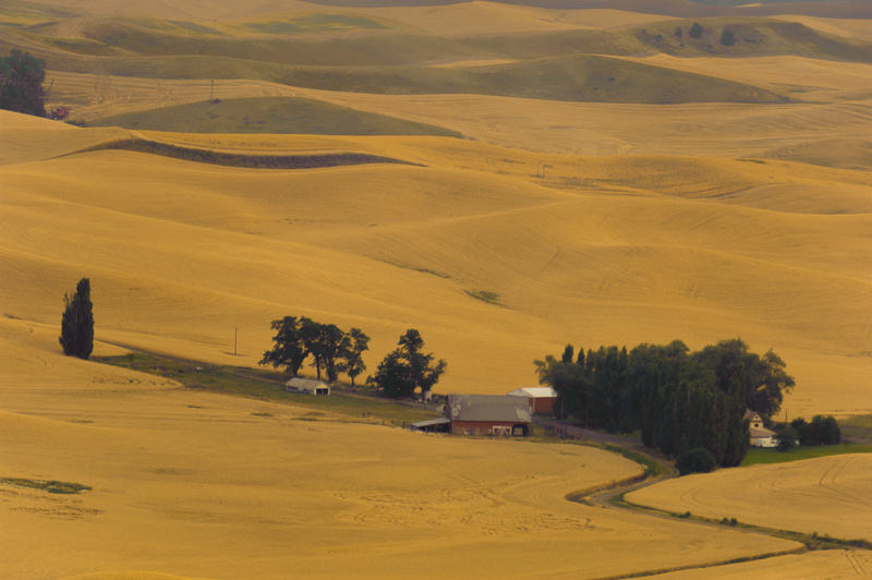 Palouse Area 2013-5946
