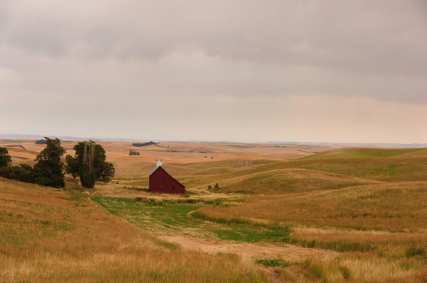 Palouse Area 2013-6033 by Robert Duncan