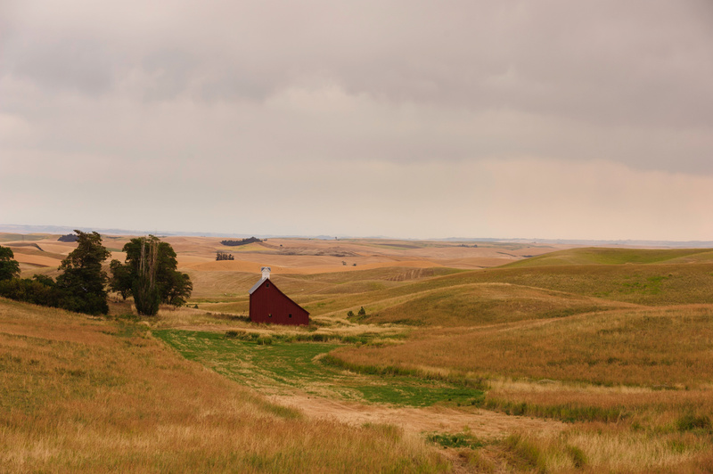Palouse Area 2013-6033