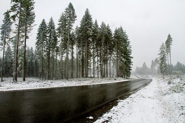 Road Into The Snow Oblivion by BruceFinocchio