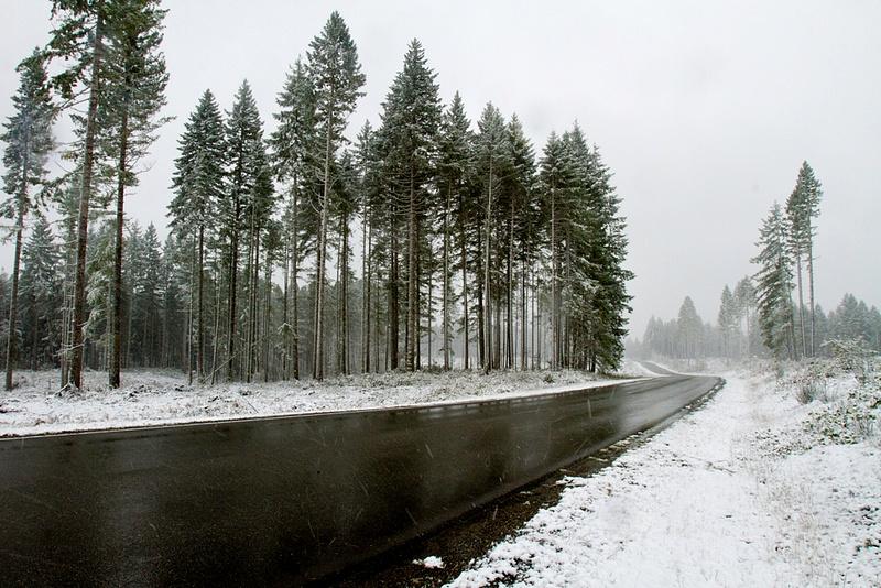 Road Into The Snow Oblivion