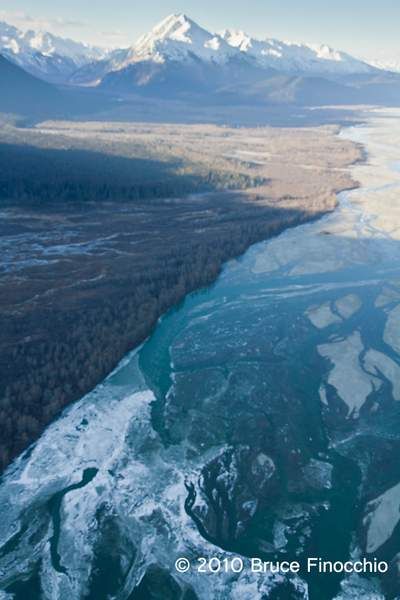 Chilkat River Delta and Valley From The Air