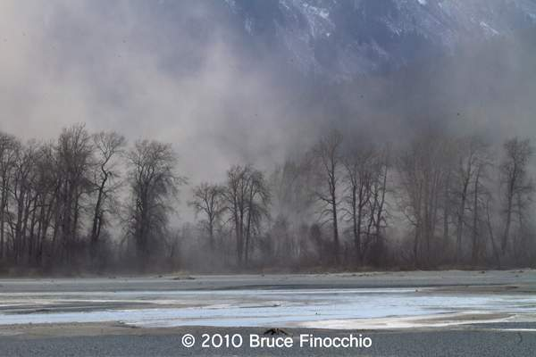 Dust Storm On The Chilkat River