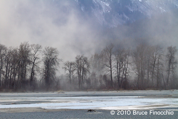 Dust Storm Over The Far Bank Of The Chilkat River by BruceFinocchio