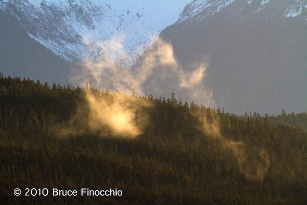 Foggy Light by BruceFinocchio
