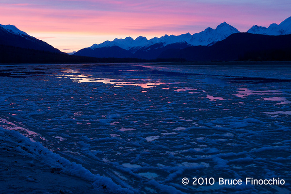 Ice Flows and Sky Reflections On The Chilkat River At Dawn by BruceFinocchio