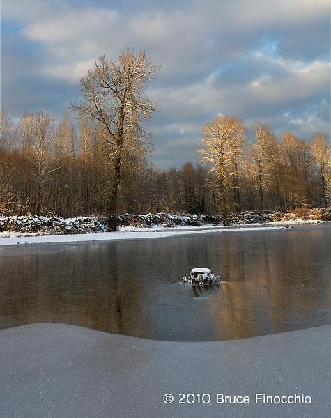 Unknow Pond Along The Skokomish River by BruceFinocchio