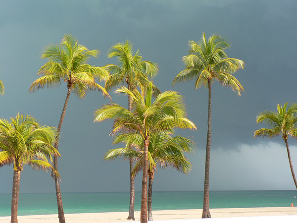 Fort Lauderdale FL (3) by Gary Acaley