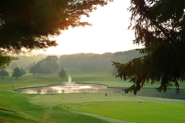 Golf Wi (3) by Gary Acaley