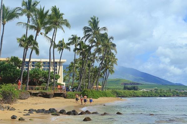 Hawaii Beach by Gary Acaley