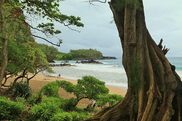 Hawaii Hana (5) by Gary Acaley