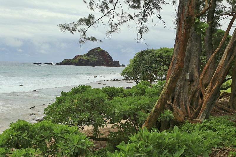 Hawaii Hana (6)