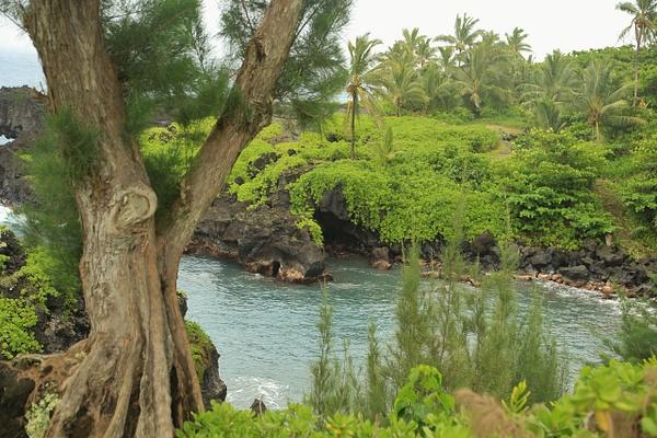 Hawaii Hana (7) by Gary Acaley