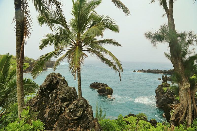 Hawaii Hana (8)