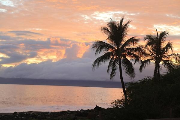 Hawaii Maui (6) by Gary Acaley