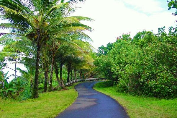 Hawaii by Gary Acaley