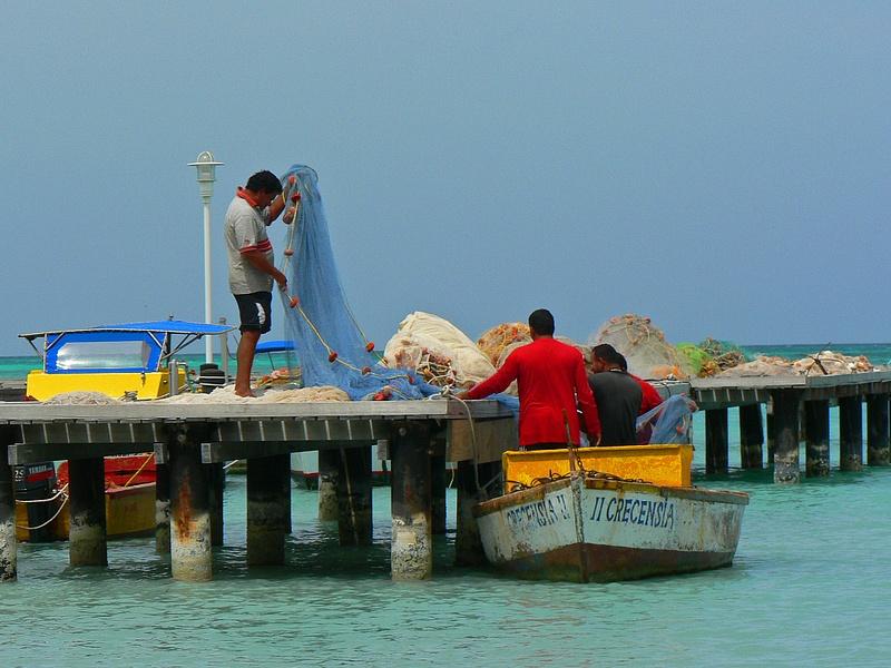 Aruba (10)