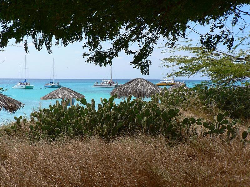 Aruba (18)