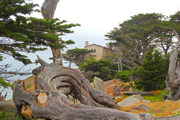Monterey CA by Gary Acaley