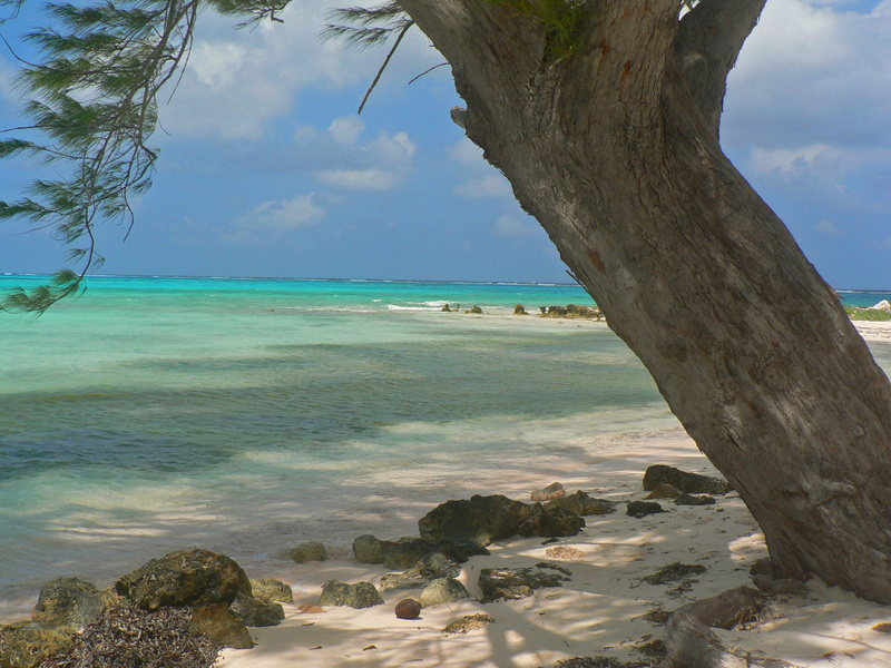 Carribean (2)