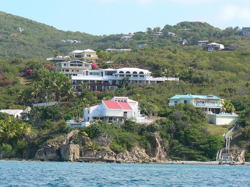 Carribean Jay Lenos