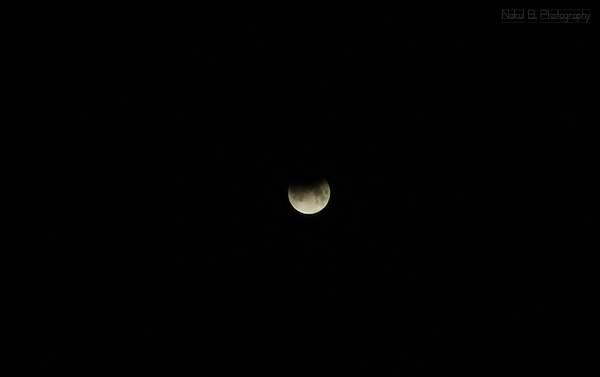 Lunar Eclipse 3