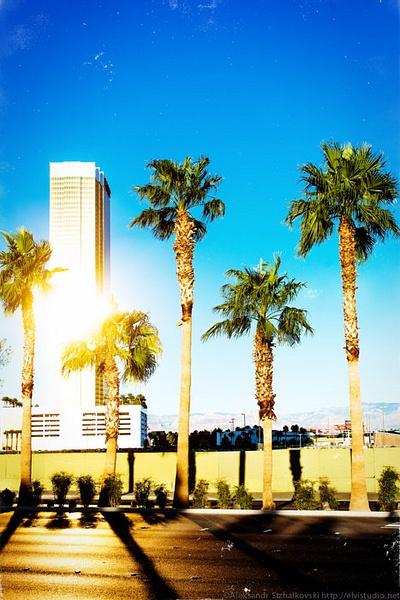Burning Sun of Nevada by elvistudio