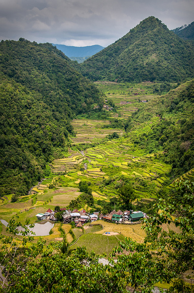 Rice_Terraces_04 by alienscream