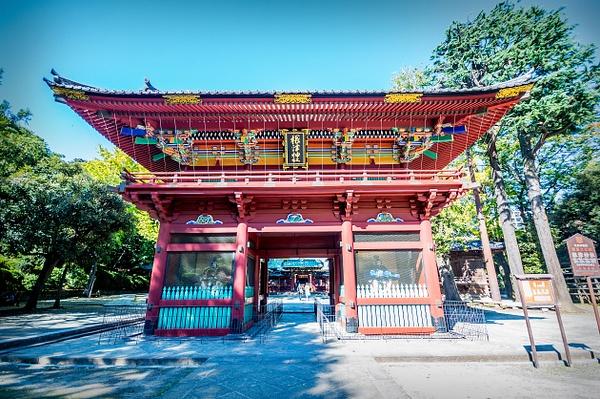 Tokyo_Trip_2017_062 by alienscream