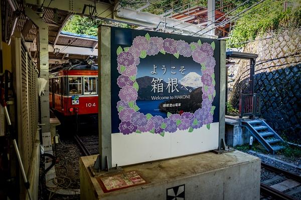 Tokyo_Trip_2017_437 by alienscream