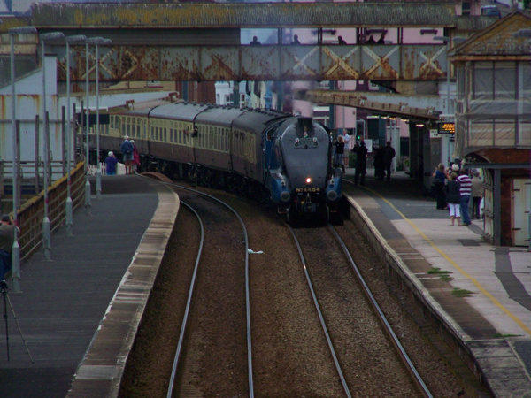 4464 Dawlish 02-09-12 (2) by AlvinKnight
