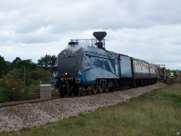 4464 Dawlish Warren 16-09-12 by AlvinKnight