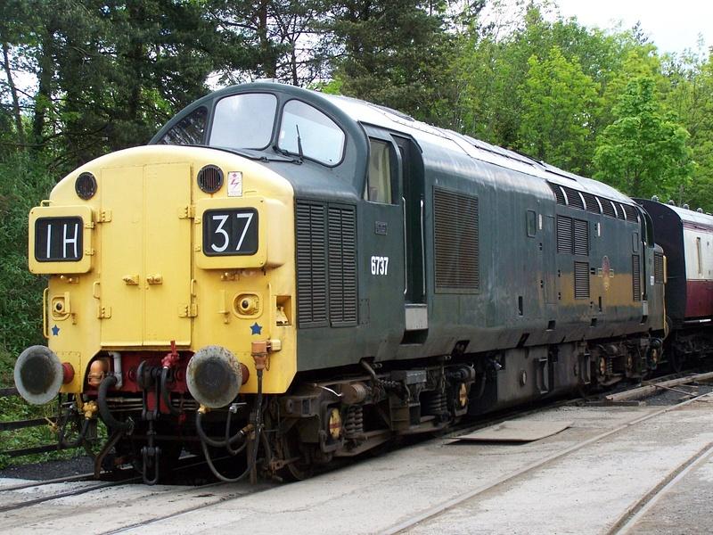 37037 Buckfastleigh 25-05-13 (2)