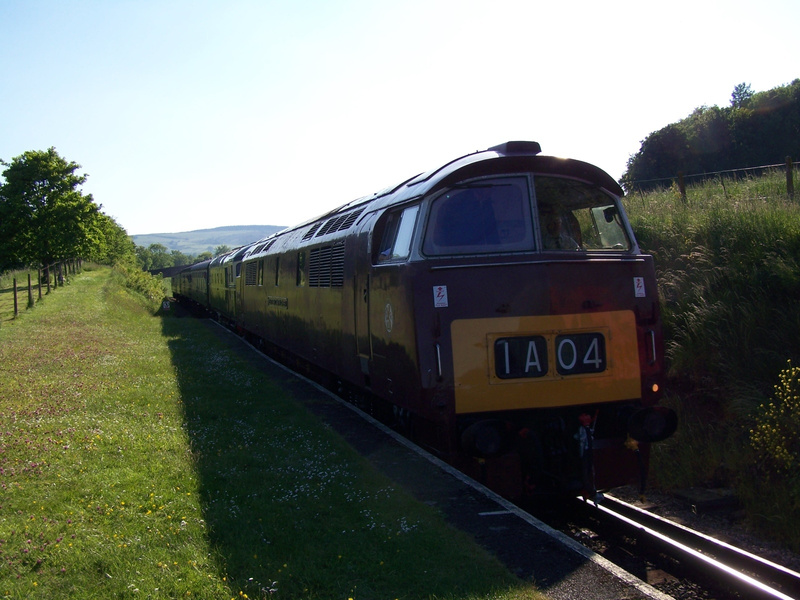 D1010 Washford 08-06-13 (4)