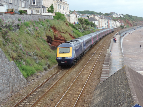 43034 Dawlish 23-06-13 by AlvinKnight