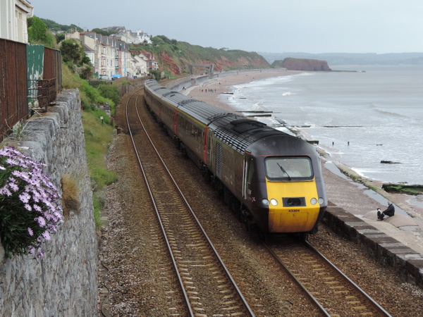 43384 Dawlish 23-06-13 by AlvinKnight