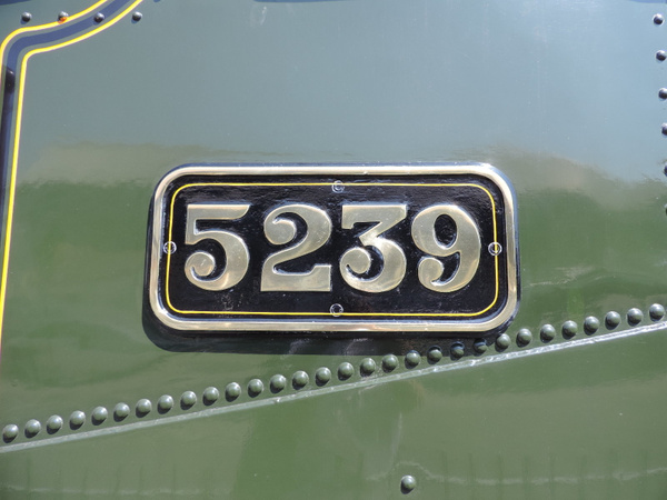 5239 Numberplate  Paignton 14-07-13 by AlvinKnight
