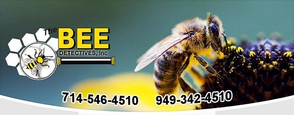Orange County Bee Removal by OrangecountyBeeremoval
