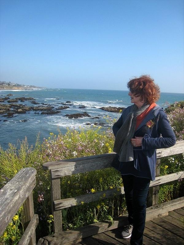Kitty in wind lookiing at ocean2