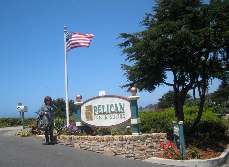Kitty stands in front of Pelican Inn sign in Cambria telephoto