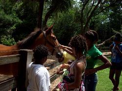 2010-08-01 Kids Activities