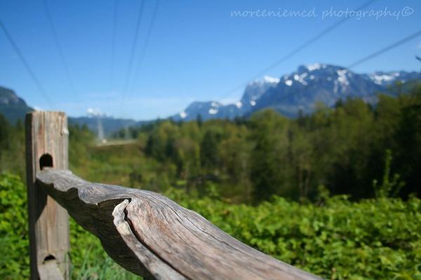 Nature by moreeniemcd